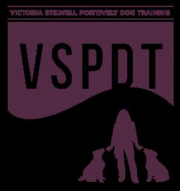VSPDTNEW_logo_text